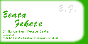 beata fekete business card